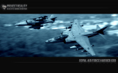 harrier_blue thumbnail